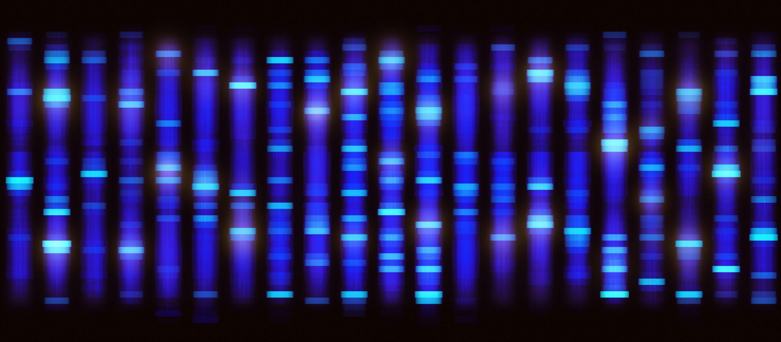 Gene sequencing data, blue on black.
